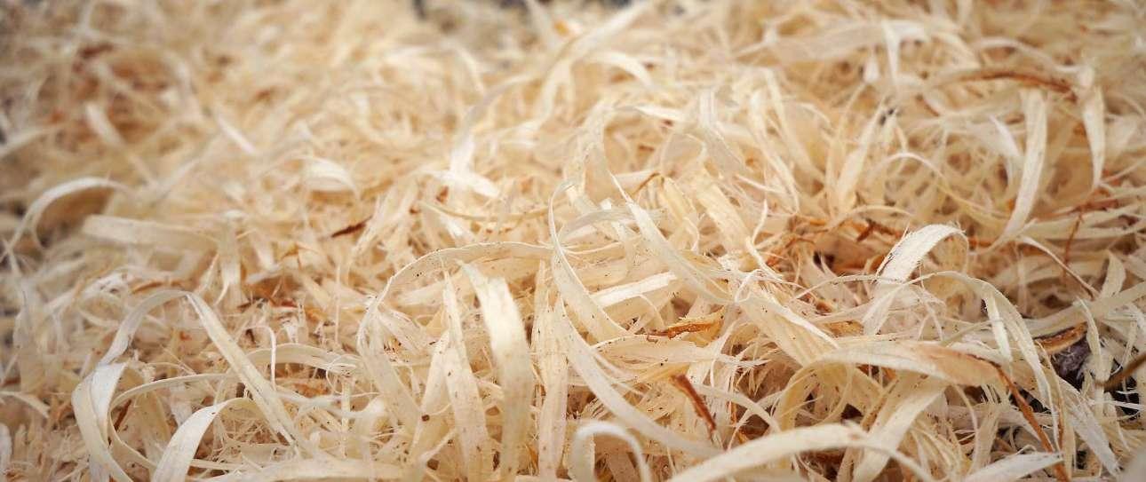 A Pile of Wood Shavings